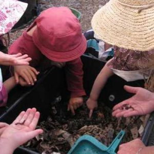 Several children reach into a plastic bin for composting with vermiculture